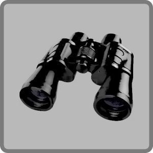 Dnevne optike